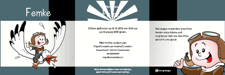 Geboortekaart geboortekaartje ooievaar-meisje-n3 drieluik